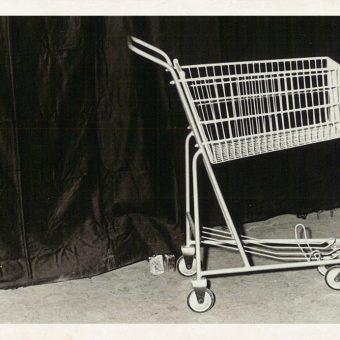 Alprem nakupovalni voziček